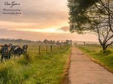 WM Pambula Flats Postcard
